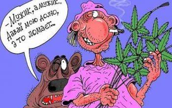 Анекдоты про наркоманов (страница 3)
